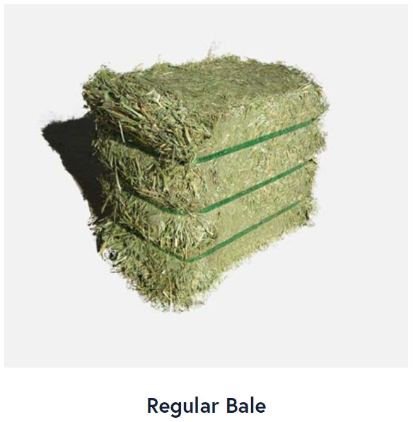 regular bale